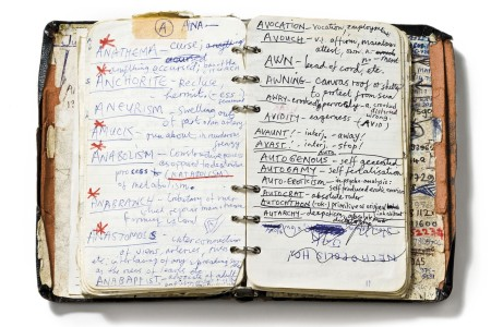 Le lexique personnel de Nick Cave (liste 18)
