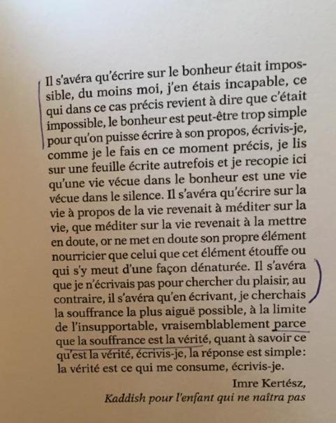 Édouard Louis Histoire de la violence (Seuil, 2016)