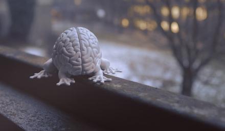 Cerveau - Arte