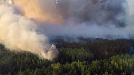 Feu de forêt près de la Centrale de Tchernobyl