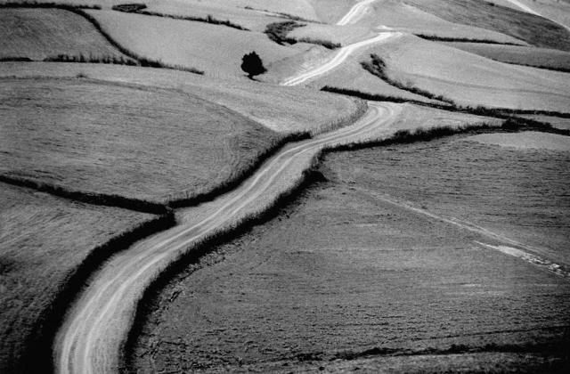 Photographie Abbas Kiarostami