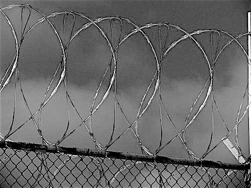 Guantanamo barbwire