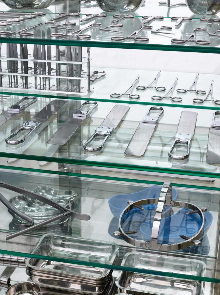 Damien Hirst, Lapdancer (détail) Verre, acier, nickel, gomme, instruments chirurgicaux